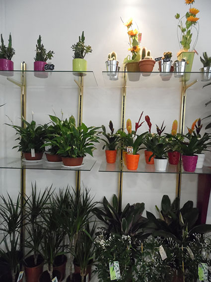 Le Jardin De Nanie